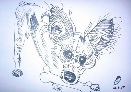 Dog-Caricatures 7