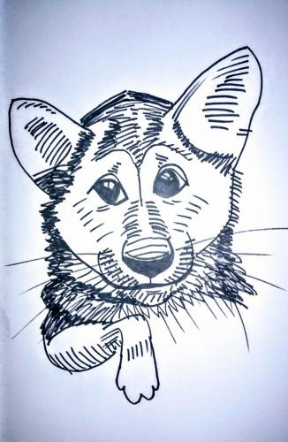 Dog-Caricatures 9