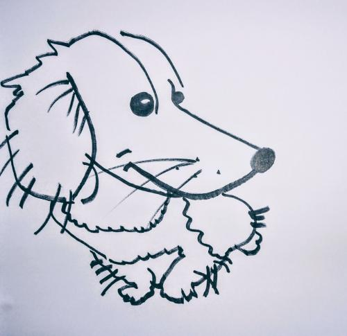 Dog-Caricatures 10